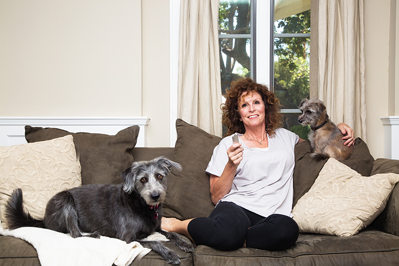 Dogs with owner on sofa